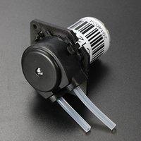 Wholesale 12V DC Dosing Pump Peristaltic Dosing Head For Aquarium Lab Analytical Water