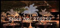 Wholesale Fashion Hot inch Ostrich Feather Plume white Wedding centerpieces table centerpiece