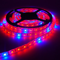 aquarium decoration plants - 5m LED Growing DC12V LED Strip Light Waterproof Red Blue for Aquarium Greenhouse Hydroponic Plant Flower Veg Grow Light