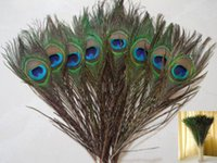 Wholesale New Cheap Natural Beatiful Peacock eye Feathers Tail Long for Bouquet DIY Party Decor