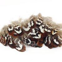 Wholesale 50pcs Beautiful Natural Pheasant Feathers cm Craft Millinary Decoration
