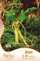 Cheap 1 Original Pack, About 6 seeds pack, Chinese Ginseng seeds Ashwaganda , Heirloom Herbs Wild Ginseng Seeds #E011