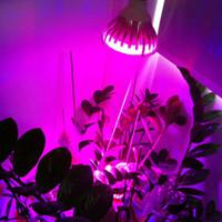 Wholesale E27 GU10 LED Bulb Grow Lamp W Red Blue LED Plant Lamp A0023