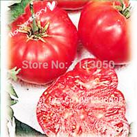 beefsteak tomato seeds - 100pcs TOMATO SEEDS Watermelon Beefsteak Tomato seeds Organic Food Bonsai plants