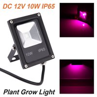 Wholesale DC12V W Red Blue LED Flood Light IP65 Water resistant Ultra thin Plant Grow Light Hydroponic Lamp for Plants Growth