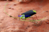 Wholesale 20pcs Mini solar energy robot Insect Bug Locust Grasshopper Toy christmas party solar gadget gifts for kids Educational Toy