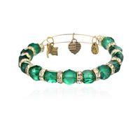 acrylic strength - Hot alex and ani bangles bracelets new Alex Ani Crimson Eden crystal beads strength charms Bangle bracelet DIY Jewelry colors