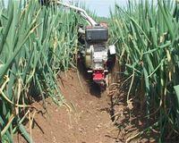 garden tractor tillers - 2015 top sale top quality hp Robin Petrol Garden Small Tractor Tiller
