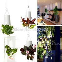 Wholesale Home Garden Office Decor Sky Planter Hanging Flower Pot Upside Down Plant Pot Basket Novelty Gift