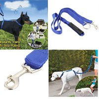 Wholesale Dog Leash Instant Trainer Training for Large Dogs Pet Rope Walking Training lbs ft H13657