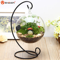 Wholesale New Hot Clear Glass Round with Hole Flower Plant Stand Hanging Vase Hydroponic Home Office Wedding Decor