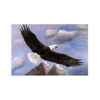 bald eagle mountain - American Bald Eagle Mountain Bird Flying Oil Painting