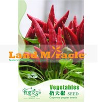 Wholesale Approx Seeds pack Cayenne Pepper Seeds Heirloom Vegetables Seeds Super Black Hot Pepper Seeds Land Miracle C022