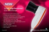Wholesale 2015 NEW M Pixels High Resolution USB Eye Iris Iriscope Iridology camera EH U Pro Software