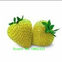 Cheap Vegetables and fruit seeds Strawberry seeds 200 pieces seeds of mixed strawberry Bonsai plants Seeds for home & garden