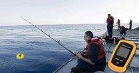 Wholesale Portable Fish Finder Depth Sonar Sounder Alarm Transducer Fishfinder m Hot