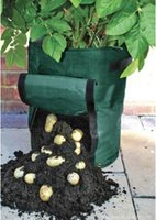 Wholesale Balcony kitchen organic vegetables pe planting bags