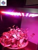 Cheap growing light Best hydroponic lights