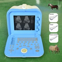 Wholesale New Portable Cheap Veterinary Ultrasound Machine with any two probes Dog Pig Sheep Cow Horse Pregnancy Test Ultrasound