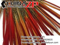 Wholesale ZP CRAFTS FACTORY www ywgy cn Cheap and Good Quality pieces cm cm Golden Pheasant Red Tips Loose Feather