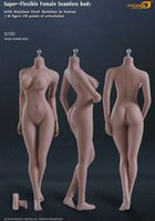 abs breast - 2015 Phicen figure toy femal body no head version Wheat Skin colour phicen large Middle breast size body