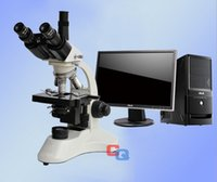Wholesale 1600x high definition electron microscope Medical Trinocular microscope