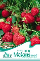 Pepper strawberry plants - Chinese Strawberry New Seeds Delicious Tasty Fruits B003 from China Garden Plants Seeds HOT