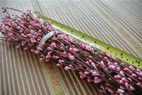 Wholesale 200 STEMS Light pink PRETTY PIP BERRY STEM FOR DIY WREATH FLORAL arrangement CRAFTS DECORATION ETC