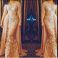 Wholesale Elie Saab Evening Dresses Plus Size with Long Sleeves Illusion Neckline Champagne Evening Gowns Long Red Carpet Dresses
