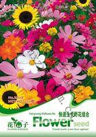 Wholesale Wild flowers combination of simple bag Original packaging Home Garden Bonsai Decor Pots Planters