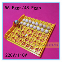 Wholesale 48 eggs egg incubator tray V V Chicken automatic incubator Poultry Incubators Automatically turn the egg tray