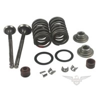Wholesale Motorcycle Brand New Intake and Exhaust Valves Kit GY6 cc Moped Scooter QMB Engine