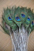 Wholesale Trimed PEACOCK eye feather inch long peacock feather for crafts weddings decor wedding supplies