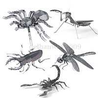 beetle spider - 2015 D Puzzle for Adult Spider Stag Beetles Dragonfly Scorpion Mantis D Metal puzzle Insect Stainless steel Mix Style You Pick
