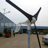Wholesale W wind turbine manufacturers to supply household generator Cheap generator lights