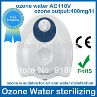 air and water purifier - ozone sterilizing air purifier AC110V AC220V mg H Timing Function fruit ozone water ozonizer air and water A3