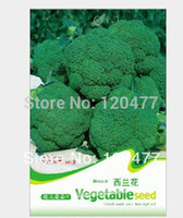Wholesale Broccoli seeds vegetable seeds particles seeds