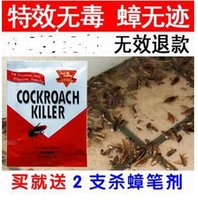 Wholesale Cockroach killer special effects Strong whole nest end environmental non toxic cockroach powder