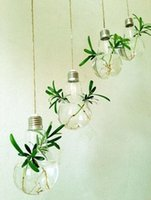 Wholesale New Arrive Light bulb shape glass hanging terrarium vases air plant succulent terrarium for home decoration