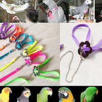 Wholesale Parrot Bird Harness Leash Adjustable Multicolor Light Soft Fashion HSLN