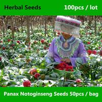 Cheap notoginseng seeds Best herbal seeds