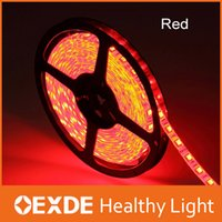 Wholesale OEXDELIGHT led strip smd volt waterproof non waterproof m roll Rgb led strip