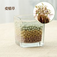 Wholesale Manufacturers supply DIY creative mini potted plant small indoor hydroponic pot plants anion ceramic carbon ball