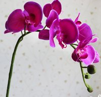 artificial flowers orchids - Display flower Moth Orchid flower butterfly orchid artificial flower for home wedding decoration whole saler