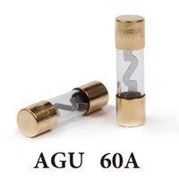 automotive gold plating - In stock AMP A Car AGU Glass Fuse Gold Plated For Car Audio