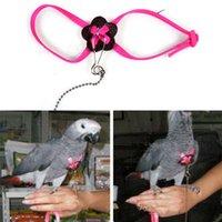 Wholesale 2015 Adjustable Nylon Animal Parrot Bird Harness Leash Rope