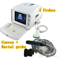 Wholesale Direct Manufacturer B Ultrasound Veterianry vet Ultrasound Scanner Convex Mhz Rectal probe animals care