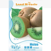 berry vitamins - 1 Original Pack seeds Pack Kiwi Fruit Seeds Kiwi Berry Actinidia chinese Fruit with High Vitamin C Healthy Fruit Land Miracle LMKW001