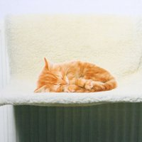 Wholesale New Products for Cats Climbing Cat Bed Cat Hammock Tapestry Pet Bed