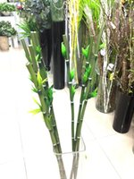 artificial lucky bamboo - Factory outlets Lucky Bamboo simulation flower artificial flowers simulation flowers manufacturers opened with wedding housewar